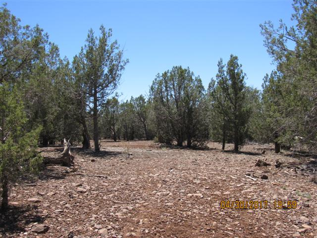 Kaibab Estates Annex 6 Lot 1285 – SOLD